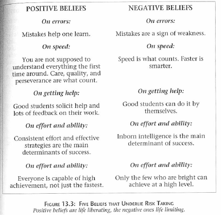Beliefs_About_Risk_Taking_and_Learning